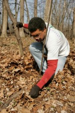 Afro American man, work, forest