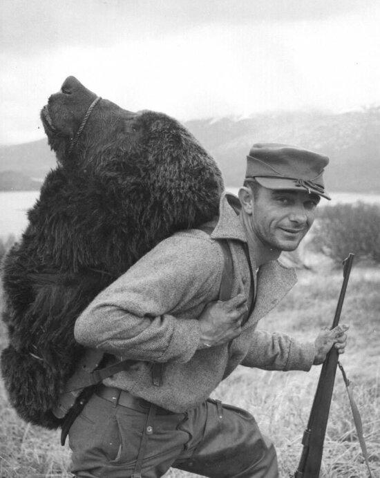 bear, hunter, Kodiak