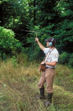 biológus, követés, Louisiana, fekete medve