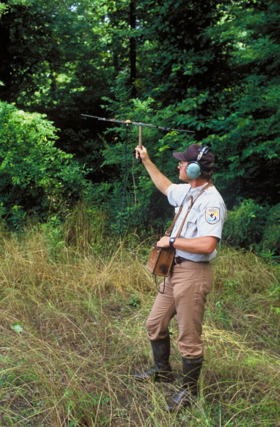 biologist, tracking, Louisiana, black bear