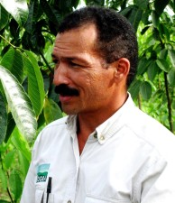 Colombia, gomma, albero, agricoltore, uomo, foto