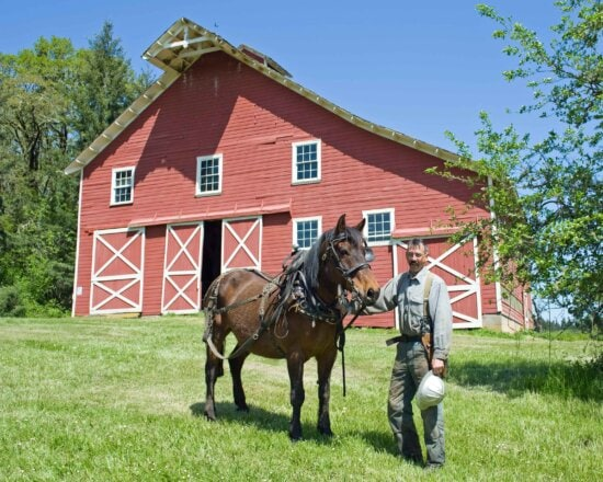 cowboy, horse, front, barn, house