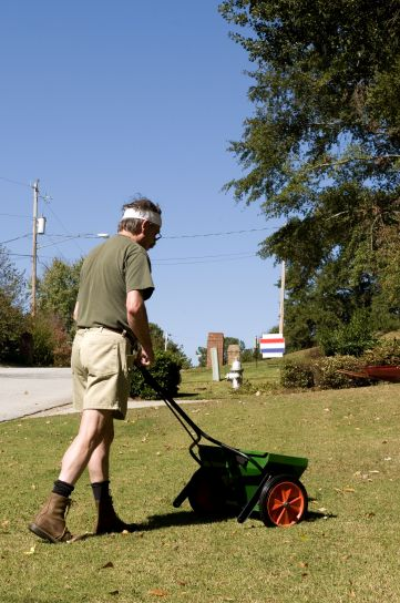 dispensing, fertilizer, granules, grass, lawn