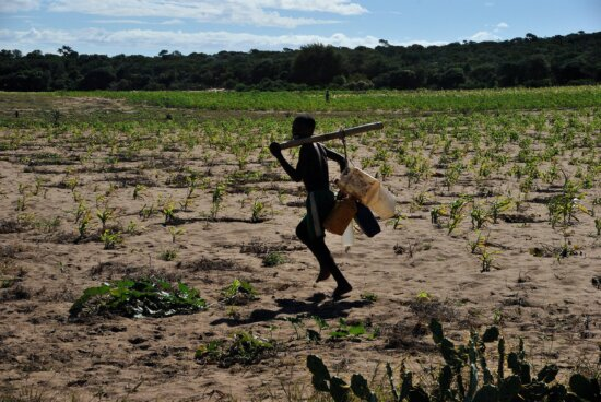 drought, affects, health, farming, Madagascar