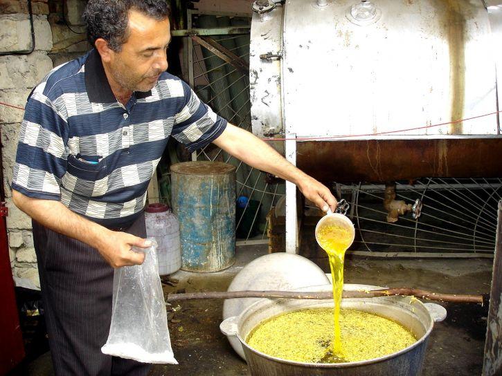 stručnjak, priprema, boje, proizvodnju, postrojenje, Guba, Azerbejdžan