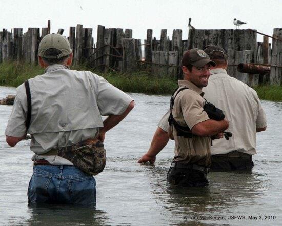 员工, 志愿者, 立场, 水