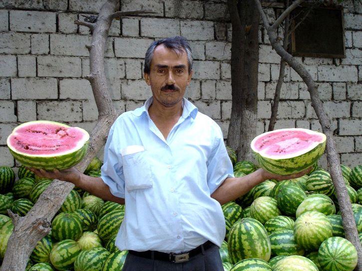 granjero, navegue, complicado, la sandía, el mercado, Azerbaiyán