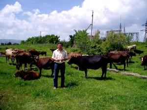 fermier, fièrement, spectacles, bétail, privatisé, ferme, Gardabani, Tbilissi, Géorgie
