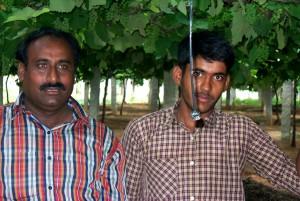les agriculteurs, l'Inde, sauver, énergie, argent, commutation, goutte à goutte, l'irrigation