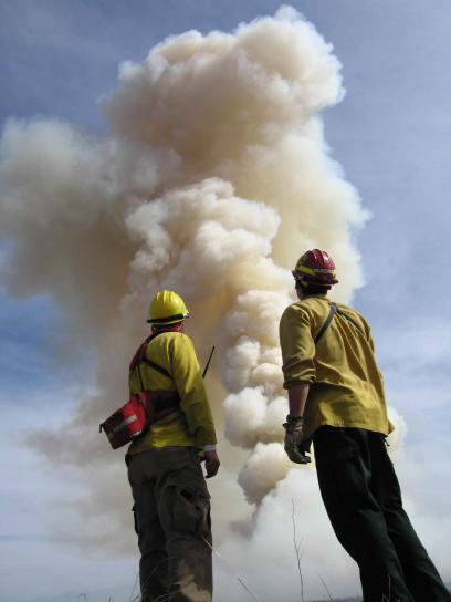 firefighters, stand, front, big, fire, smoke