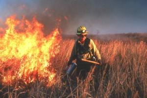 Feuerwehrmann, Feuer, Kampf mit Feuer