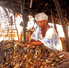 fish, seller, prepares, smoked, fish, transport, neighboring, guinea