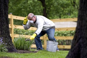 gardening, beneficial, activity, environment, partake, exercise