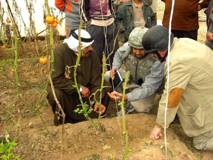 Irak, îmbunătăţirea, agricultura, fermierii locali,