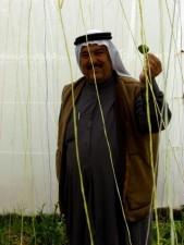 local, farmer, bell pepper, grown, seed, program