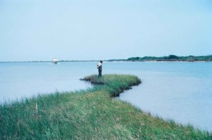 man, eroding, shoreline