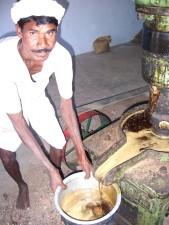 man, extracts, biofuel, pongamia, seeds, Powerguda, village, andhra, pradesh