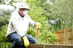 човек, торене, растения, градински