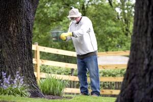 l'homme, le jardinage