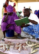 man, reading, book, female, fish, seller, market, Senegal