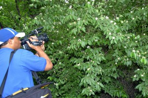 man, recording, video, cammera