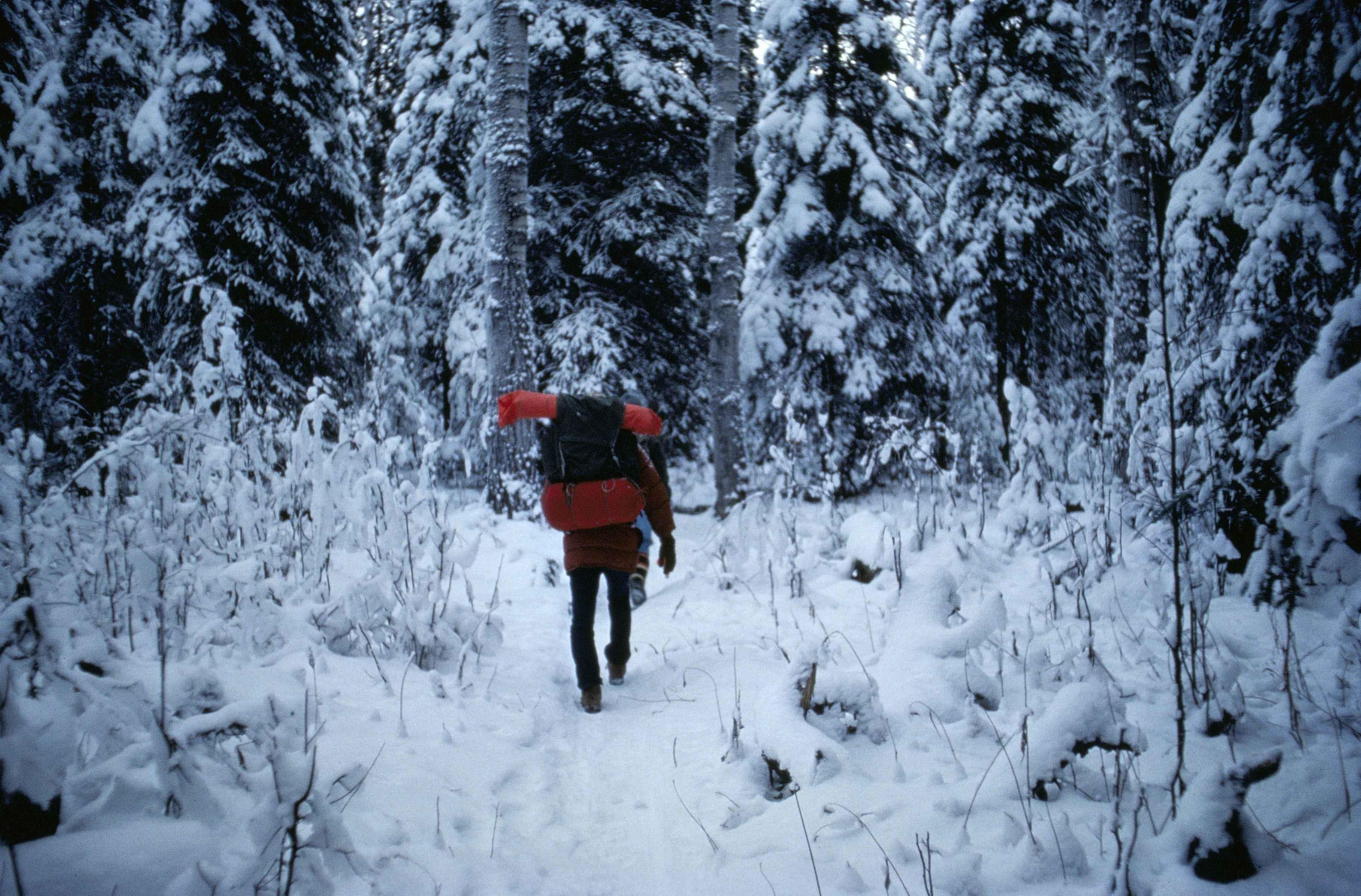 фото мужчина зимой в лесу цветочного