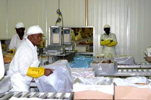 meat, packers, prepare, beef, export, greatly, growers, profits