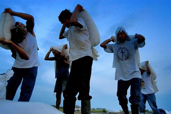 men, carrying, sacks, salt, backs, Juan, Selva, Guatemala