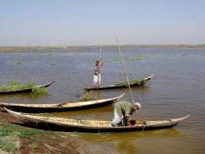 men, boats, restore, marshlands