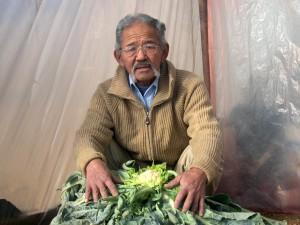 Mongolská, farmář, zeleniny