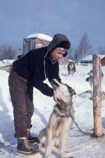 native, American, resident, man, sled, dog
