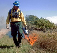 personnel, controlled, fire