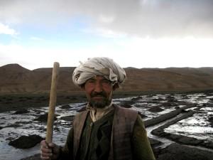 potato, farmer, Bamyan, province, central, Afghanistan