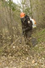 service, employee, leaf, blower, clear, path