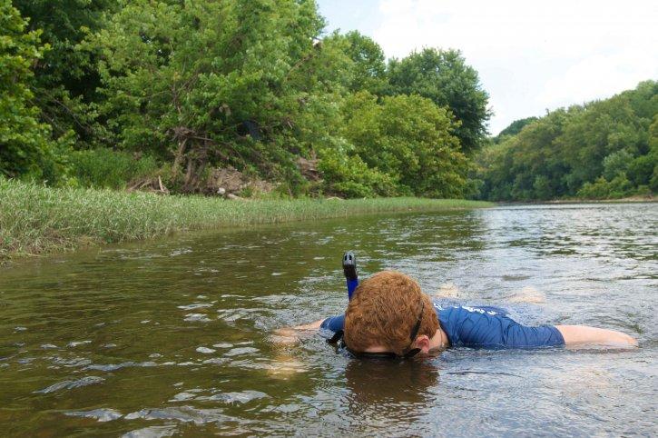 snorkeler, dykke, grunne, elven