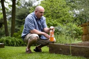 spraying, pesticide, plants, garden