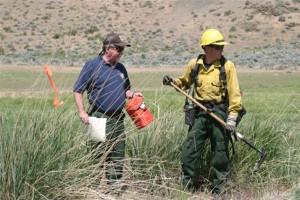 two, men, field, fireman, gear