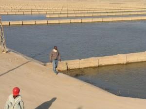 eau, canal, projet, les travailleurs, les hommes, travaillant