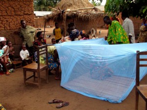 man, demonstrates, set, mosquito, bed, net, protect, getting, malaria