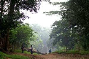 de marzo, por la mañana, el Congo, África