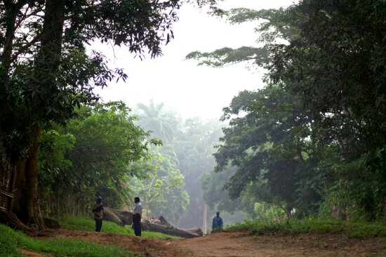 march, morning, Congo, Africa