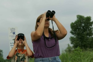 madre, figlio, condivisione, momento, insieme, birdwatching