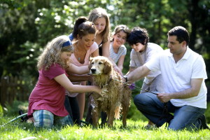 mère, père, quatre, enfants, chien, jouer, à l'extérieur