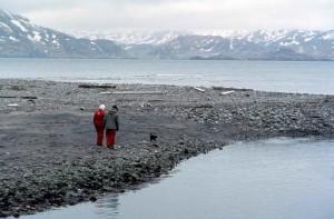 Пожилые пары, прогулки, вниз, побережье, зима
