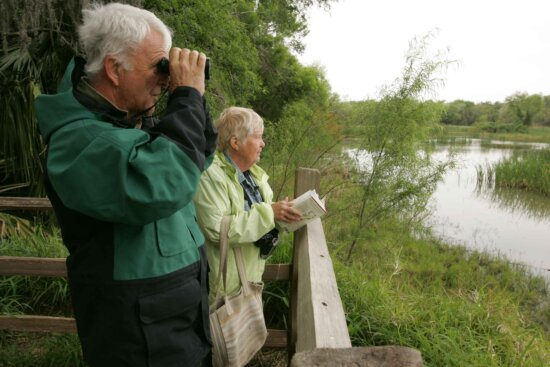 older couple, watching, observation, deck