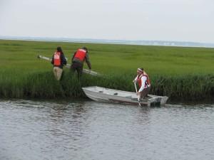 boat, grassy, swamp