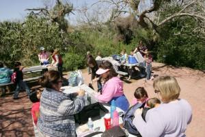 people enjoying, beautiful, day, picnic