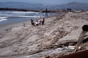 ljudi, plaža, naplavina
