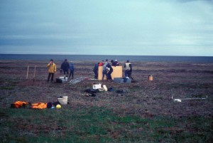 people, field, constructing, camp