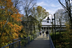 emberek, gyalog, kicsi, séta, híd